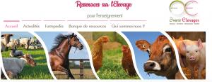 Image d'accueil du site internet ressources-elevage.net